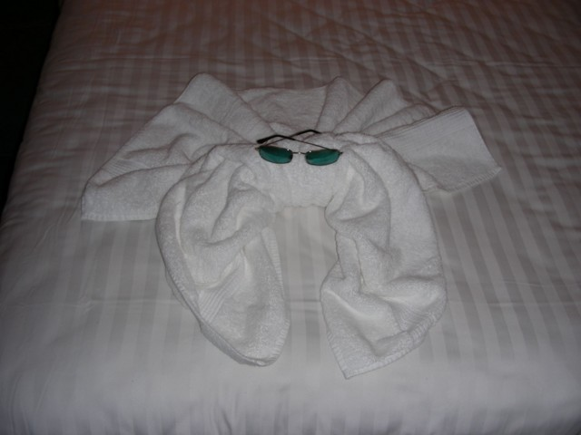 The towel octopus(?) in my cabin