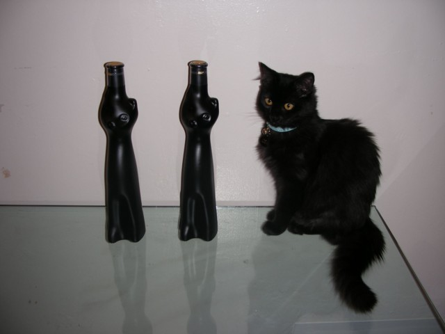 I found Schwartze Katte Riesling in these cool bottles, so I had to buy two! Ebony barely sat still enough for one photo ;)