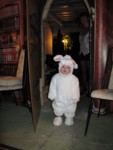 Jax, the cutest White Rabbit ever!