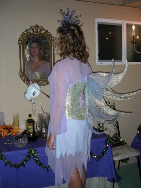 Fairy mirror & wings