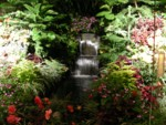 Butchart Gardens are also beautiful at night!