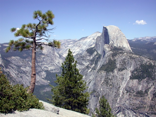 Halfdome from Glacier Point