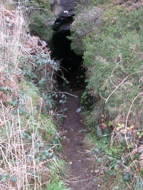Thu Dec 30 04:39:29 2004 A smuggler's cave
