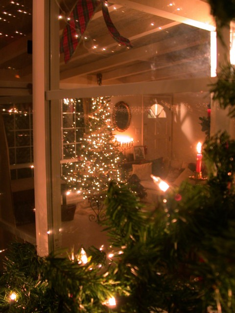 Looking inside through the front window - even artsier through the garland ;)
