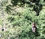 Sheila on the canopy tour in Costa Rica