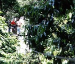 Susan on the canopy tour in Costa Rica