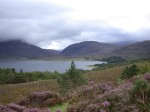 View looking north across Loch Torridon