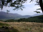 View from Whinlatter Pass