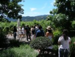 Highlight for Album: Napa Offsite 2008
