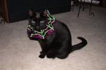 Kylie in her costume - Halloween 2004