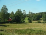 On the train from Oslo to Stockholm - in Sweden - trying to catch a photo of a sod roof!