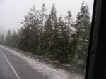 Lots of snow and we're only by Mt Shasta!