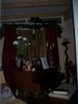 Ebony's latest festive perch